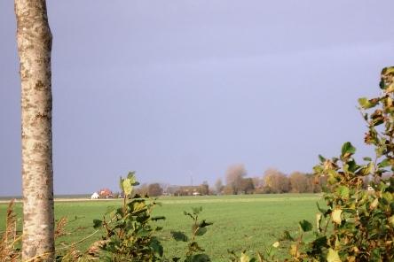 Hoogland